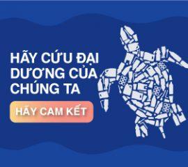 World-Ocean-Day_Digital-ad-in-language_VT_250-4